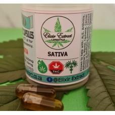 FECO Capsules 31 - Sativa