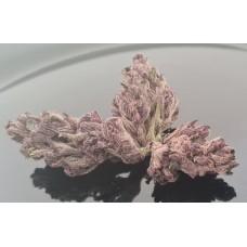 Dirty Kush Breath - Indoor - 1g