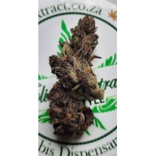 Dirty Kush Breath - Available for courier 2021/04/26