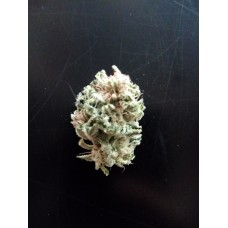 Ethos Critical Glue, 3 Seeds, Regular - Photoperiod