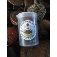 FECO Capsules 31, 7 strain mix
