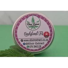 Candyland F4 - 5 Seeds - Regular - Photoperiod